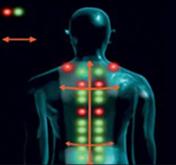 Reflexpunkte am Rücken